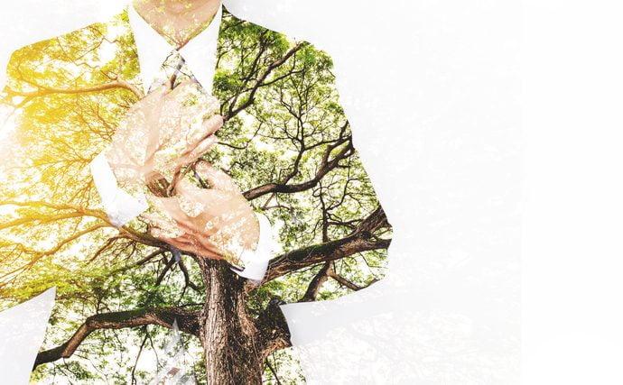 المبادئ السبعة للقيادة المستدامة